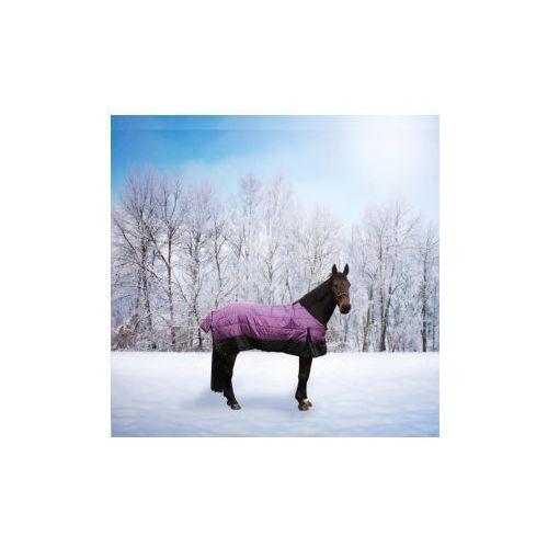 Derka zimowa- York Sunset fioletowo-czarna - produkt dostępny w Pro-horse Sklep Jeździecki