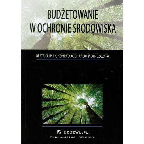 Budżetowanie w ochronie środowiska - Filipiak Beata, Kochański Konrad, Szczypa Piotr (2010)
