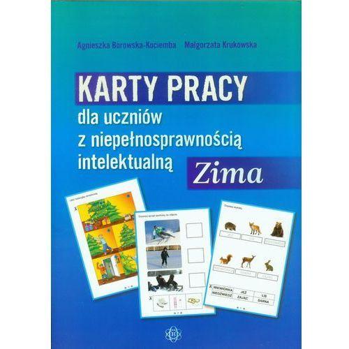 Karty pracy dla uczniów z niepełnosprawnością intelektualną Zima (2012)