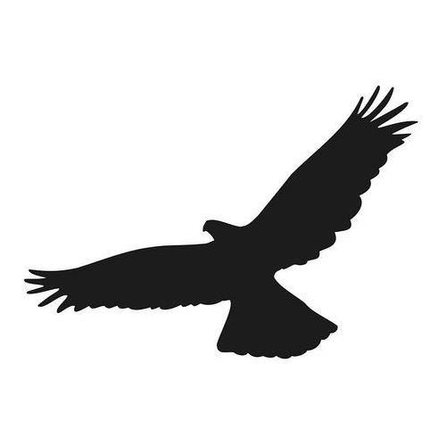 Odstraszanie Naklejki na szyby, ptak drapieżny wzór 02.