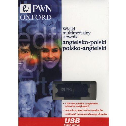 Wielki multimedialny słownik angielsko-polski, polsko-angielski Pendrive, Wydawnictwo Naukowe Pwn