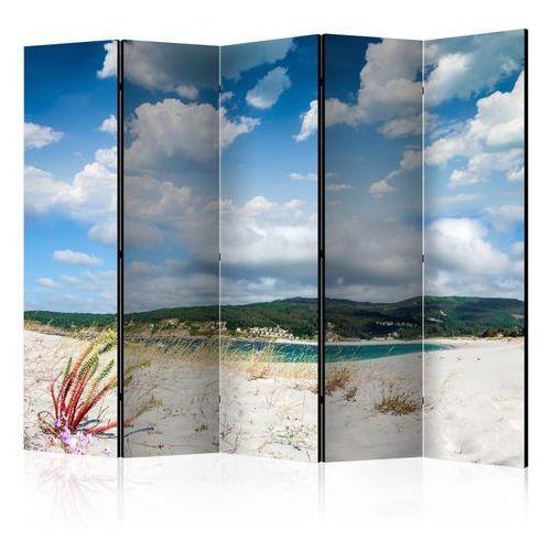 Parawan 5-częściowy - Plaża na Costa da Morte II [Room Dividers]