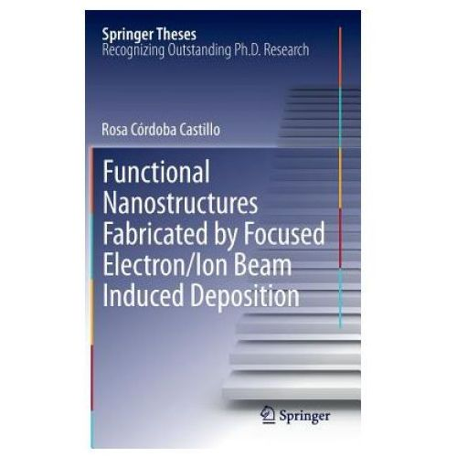 Functional Nanostructures Fabricated by Focused Electron/Ion Beam Induced Deposition (9783319020808)