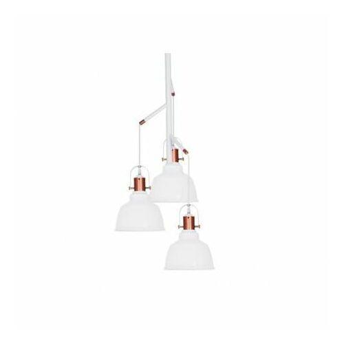 Azzardo Lampa wisząca darling glass 3 wh md71940-3a - - autoryzowany dystrybutor azzardo (5901238421450)