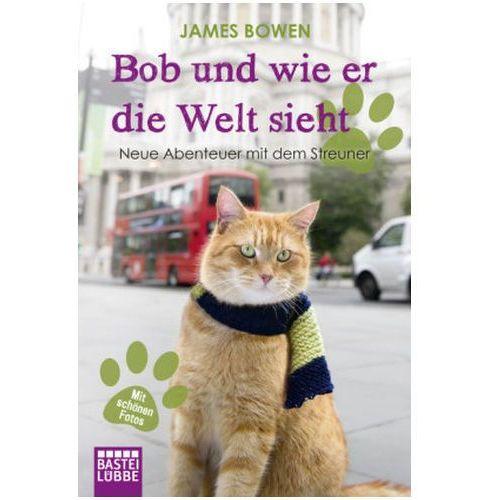 Bob und wie er die Welt sieht, Bowen, James