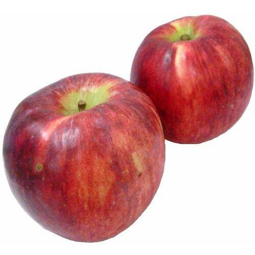 Świeże dystrybutor: bio planet s.a., wilkowa wieś 7, 05-084 leszno k. Opakowanie zbiorcze (kg) - jabłka świeże bio (jonagored-polska) (około 13 kg) (5902175867134)