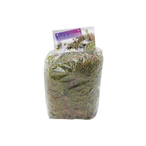 Roślina ozdobna Mech 1.5 l