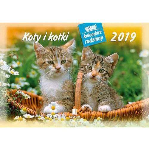 Kalendarz rodzinny 2018 WL 9 Koty i kotki, WL099