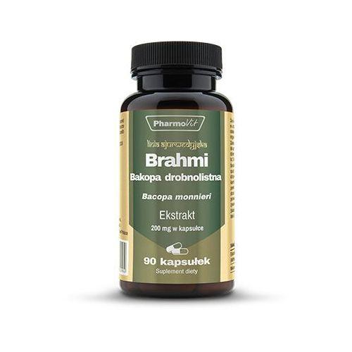Gedächtnispflanze 10 x Brahmi Pflanzen Ayurveda Heilpflanze Bacopa monnieri