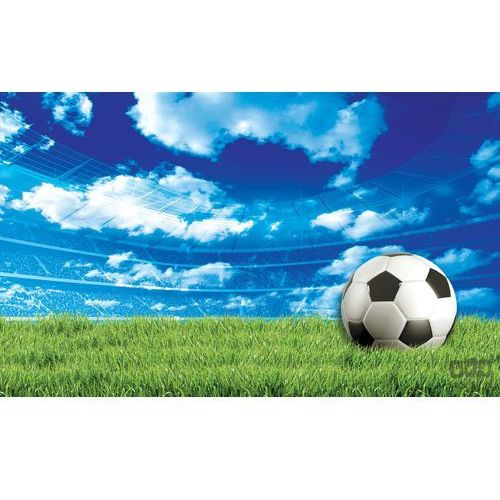 Fototapeta Piłka Nożna 3388, 3388
