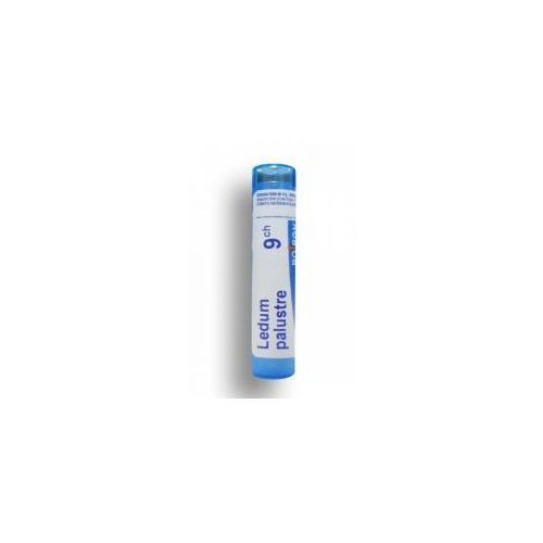 BOIRON Ledum Palustre 9 CH granulki 4 g