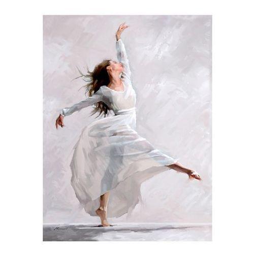 Styler Obraz canvas 60 x 80 cm waterdance adage (5907664198416)