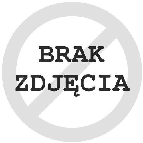 Bridgestone Blizzak W995 195/65 R16 104 R