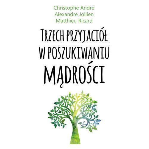 Trzech przyjaciół w poszukiwaniu mądrości - Matthieu Ricard - ebook