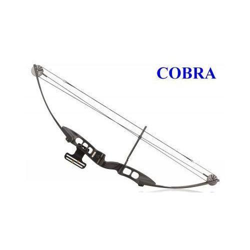 Profesjonalny łuk bloczkowy cobra + 2 strzały i akcesoria. marki Protex