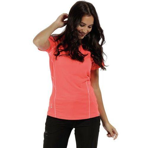 a3d36600913253 Regatta Virda II Bluzka z krótkim rękawem Kobiety czerwony 12 | 38 2018  Koszulki z krótkim rękawem 54,99 zł Kategoria: Koszula; rodzaj: krótki  rękaw; ...