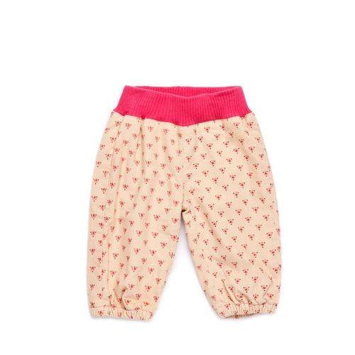 Spodnie Niemowlęce 5L2804 - produkt z kategorii- spodenki dla niemowląt