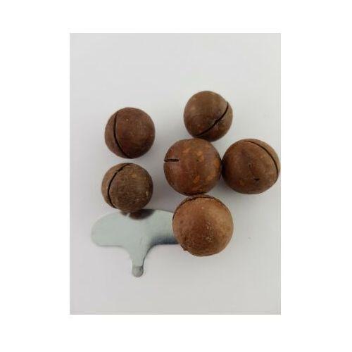 Orzechy macadamia w łupinie z kluczem do otwierania 0.5 kg
