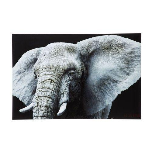 Kare Design Face Elefant Obraz na Szkle 80x120cm - 35851 (obraz)