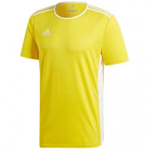 Koszulka piłkarska entrada cd8390 marki Adidas