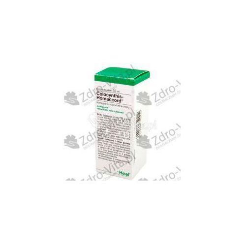 Oferta HEEL Colocynthis-Homaccord krople 30 ml (Homeopatia)