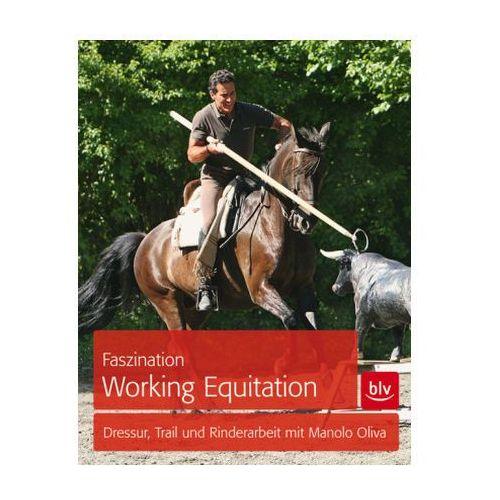 Faszination Working Equitation