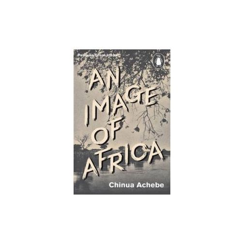An Image of Africa (2014)