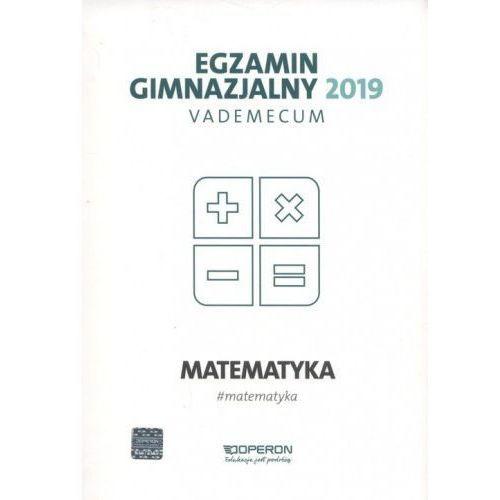 Egzamin gimnazjalny 2019 Vademecum Matematyka - Kinga Gałązka (2018)