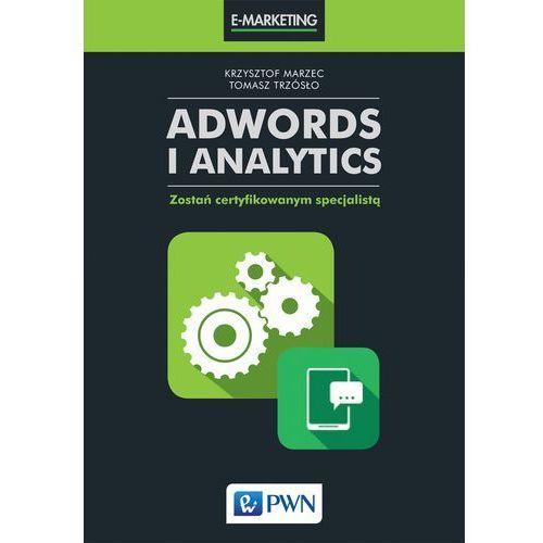 AdWords i Analytics - Dostawa 0 zł (2017)