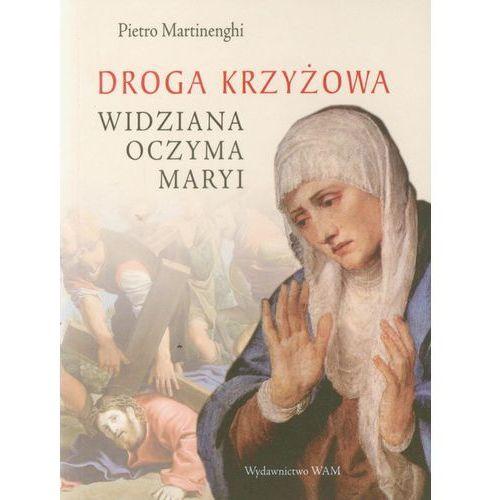 Droga krzyżowa widziana oczyma Maryi (9788375057409)