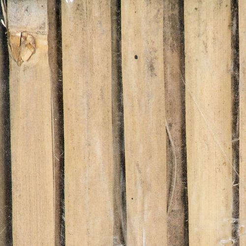 MATA OZDOBNA MASKUJĄCA BAMBUS ORYG. ŁUPANKA wysokośc 1,5 m ze sklepu siatkowy.com