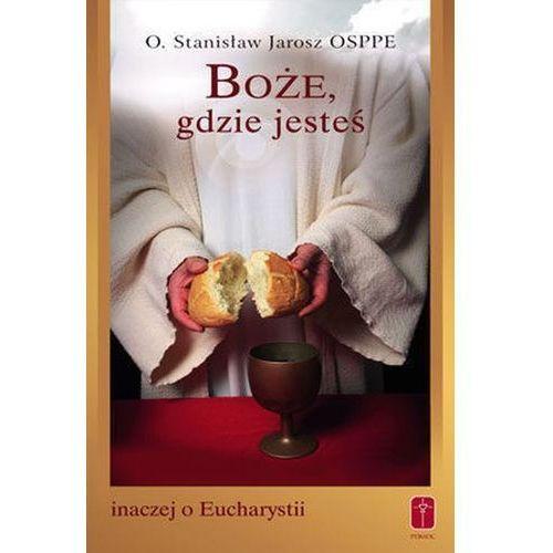 Boże, gdzie jesteś. Inaczej o Eucharystii, oprawa miękka