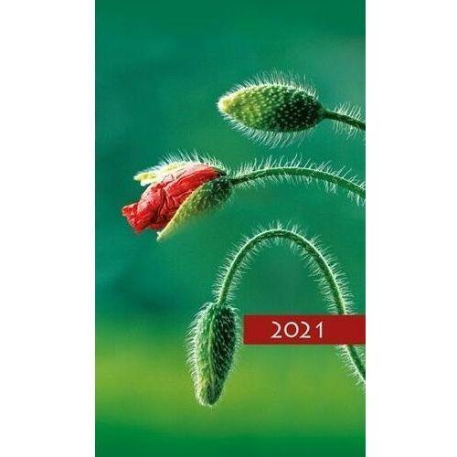 Edycja świętego pawła Kalendarz 2021 tygodniowy kolorowy mak (5907564027533)