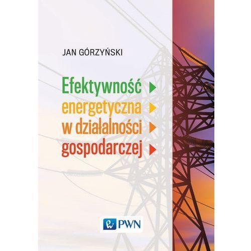Efektywność energetyczna w działalności gospodarczej - Jan Górzyński (350 str.)