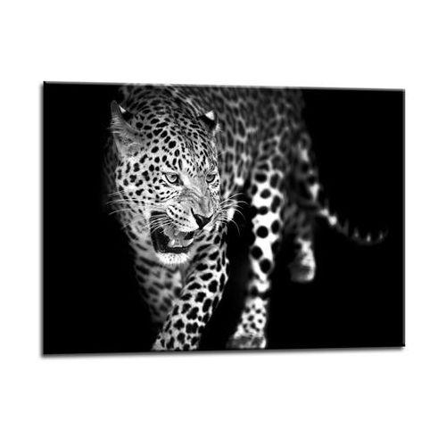 Obraz Glasspik Leopard, GL106LEOPARD70X100