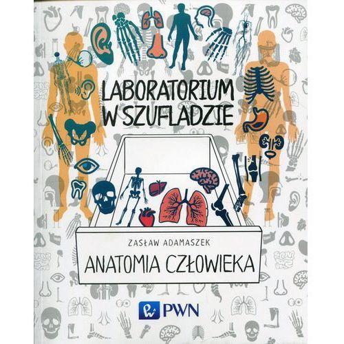 Laboratorium w szufladzie Anatomia człowieka (9788301198602)