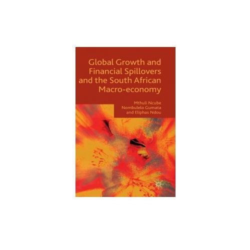 Global Growth and Financial Spillovers and the South African Macro-Economy (9781137512956)