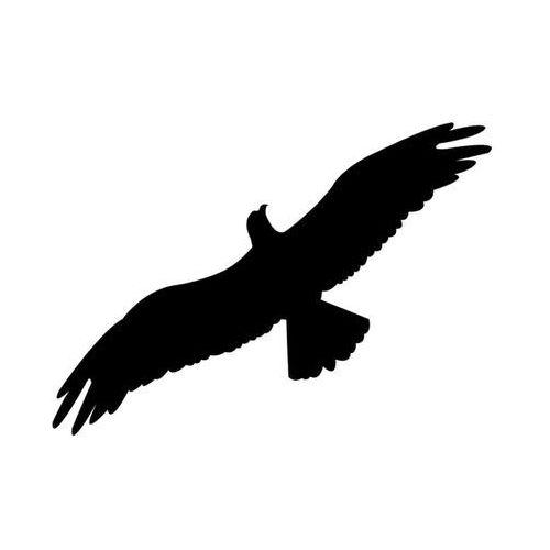 Naklejki na szyby, ptak drapieżny wzór L30. Naklejka do odstraszania.