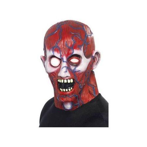 Maska nauka anatomii halloween - 1 szt. marki Dan