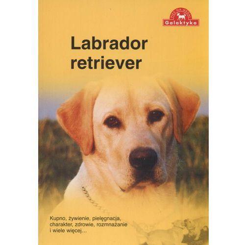 Labrador retriever (2009)