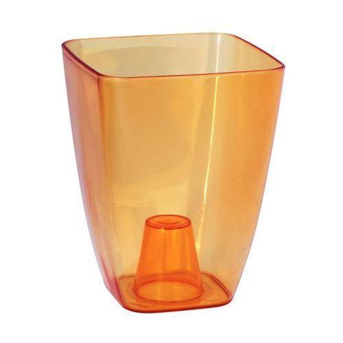 Form-plastic Osłonka plastikowa 13 x 13 cm herbaciana storczyk (5907474316192)