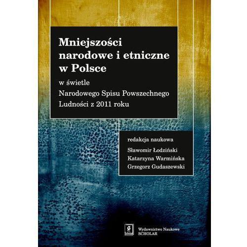Mniejszości narodowe i etniczne w Polsce (9788373837355)