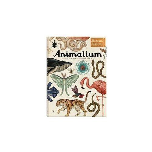 Animalium Muzeum Zwierząt - Jenny Broom. Katie Scott, Dwie Siostry