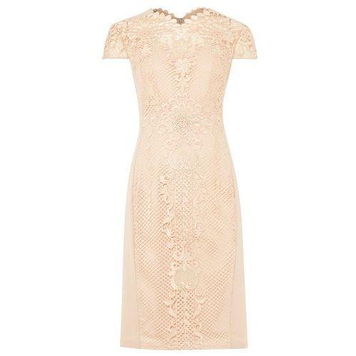 Phase Eight Macela Dress, 204163