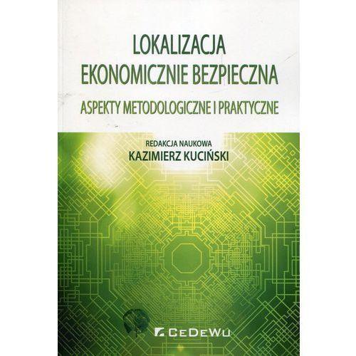 Lokalizacja ekonomicznie bezpieczna - Kazimierz Kuciński (9788375569568)