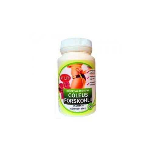 Pokrzywa Indyjska Coleus forskohlii ekstrakt 700mg forskolina 100 tabletek My Life - sprawdź w wybranym sklepie