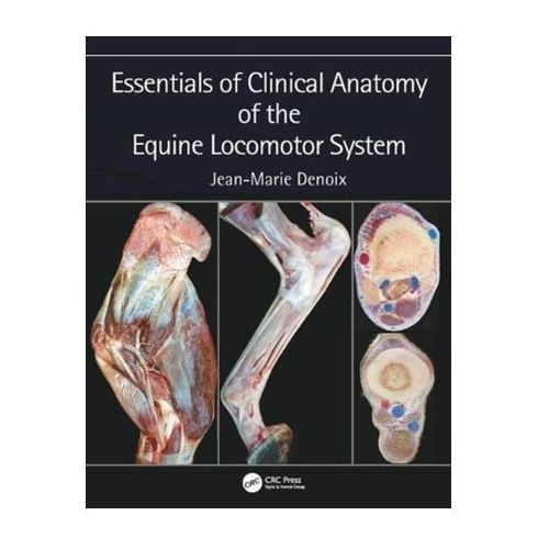 Essentials of Clinical Anatomy of the Equine Locomotor System Denoix, Jean-Marie