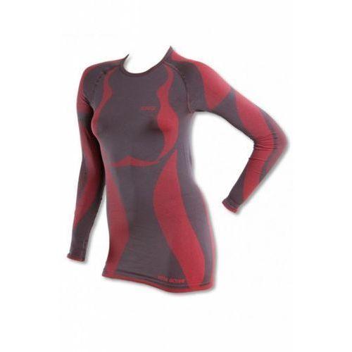 5115b3a02 Gatta t shirt l 2841S szary ferrari koszulka 108,90 zł Tshirt z dlugim  rekawem produkowany w technologii bezszwowej, dwuwarstwowej o wyjatkowych  ...