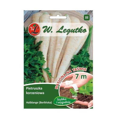 Pietruszka korzeniowa Halblange ( Berlińska ) nasiona na taśmie LEGUTKO 7m, 5903837493517