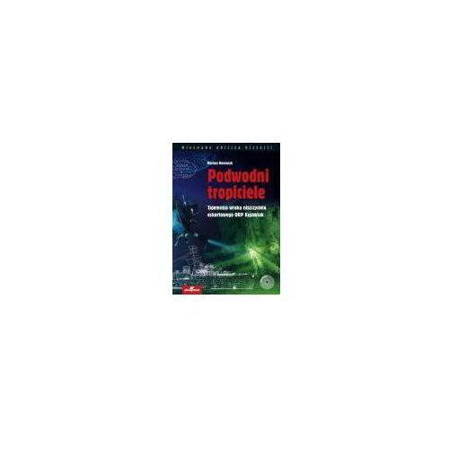 Podwodni tropiciele Tajemnica wraku niszczyciela ORP Kujawiak (2017)